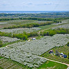 Aerial photo of Cherry Orchards on Old Mission Peninsula near Traverse City