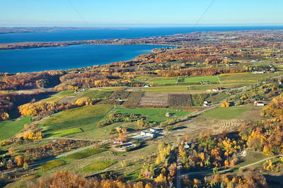 Aerial Old Mission Peninsula Michigan Vineyards in the Fall