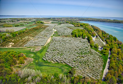 Aerial of Cherry Orchards on Old Mission Peninsula