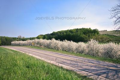 Spring Roads in Leelanau County, Michigan