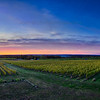 Sunset at over an Old Mission Vineyard near Traverse City, Michigan