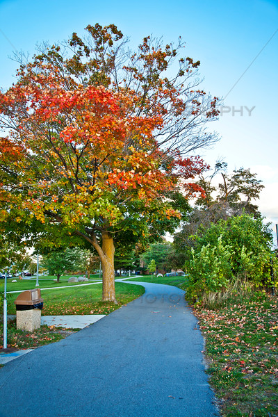 Fall on the Tart Trail - Traverse City, Michigan