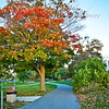 Fall on the Tart Trail - Traverse City, Michigan