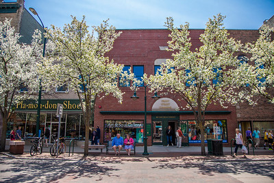 Downtown Traverse City, Michigan on Front Street