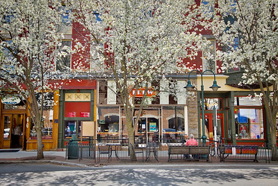 Spring Scene on Front Street in Traverse City