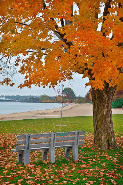 Fall in Traverse City along the Grand Traverse Bay