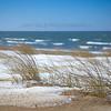 Snow and Dune Grass in St Joseph, Michigan
