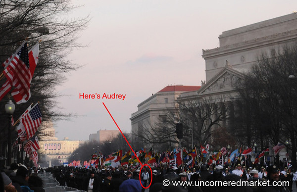 Where's Audrey? - Washington DC, USA