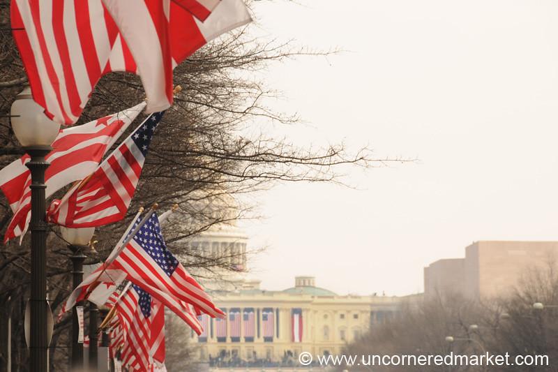 American Flags - Washington DC, USA