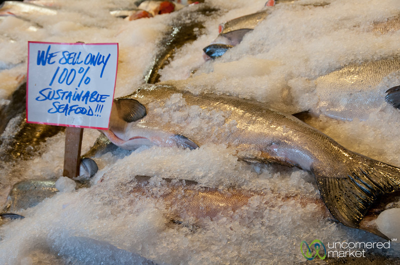 Sustainable Seafood at Pike Place Market - Seattle