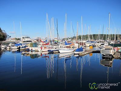 Bainbridge Island Harbor and Yachts - Seattle, Washington