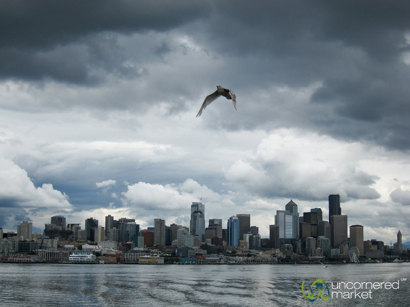 Seattle Skyline on a Cloudy Day - Washington
