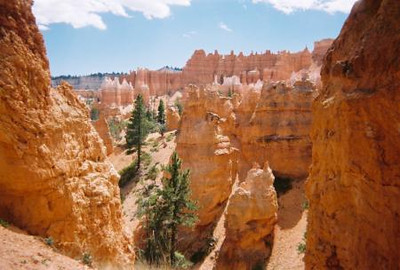 Canyons - Bryce Canyon, Utah