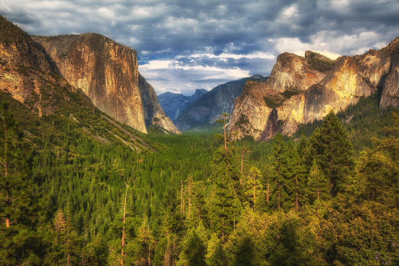 Looking down the Yosemite Valley