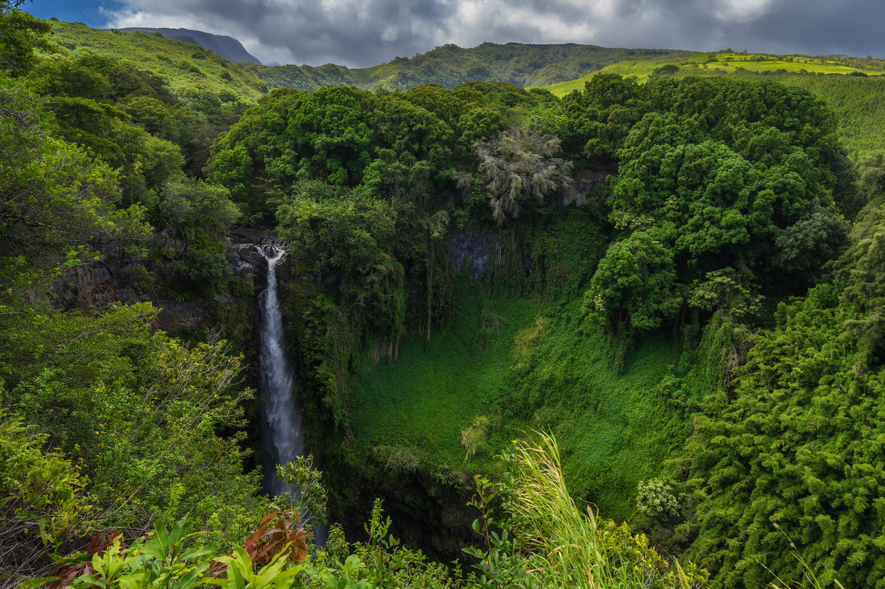 Beautiful Photos of 2015: Lush Maui Landscapes