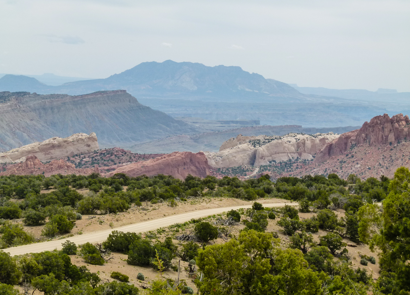 A ribbon of dirt road travels through green sagebrush as it crests a hill on Burr Trail Road. Looking out into Capitol Reef National Park the stone ridges fold onto each other with mountains in the distance..