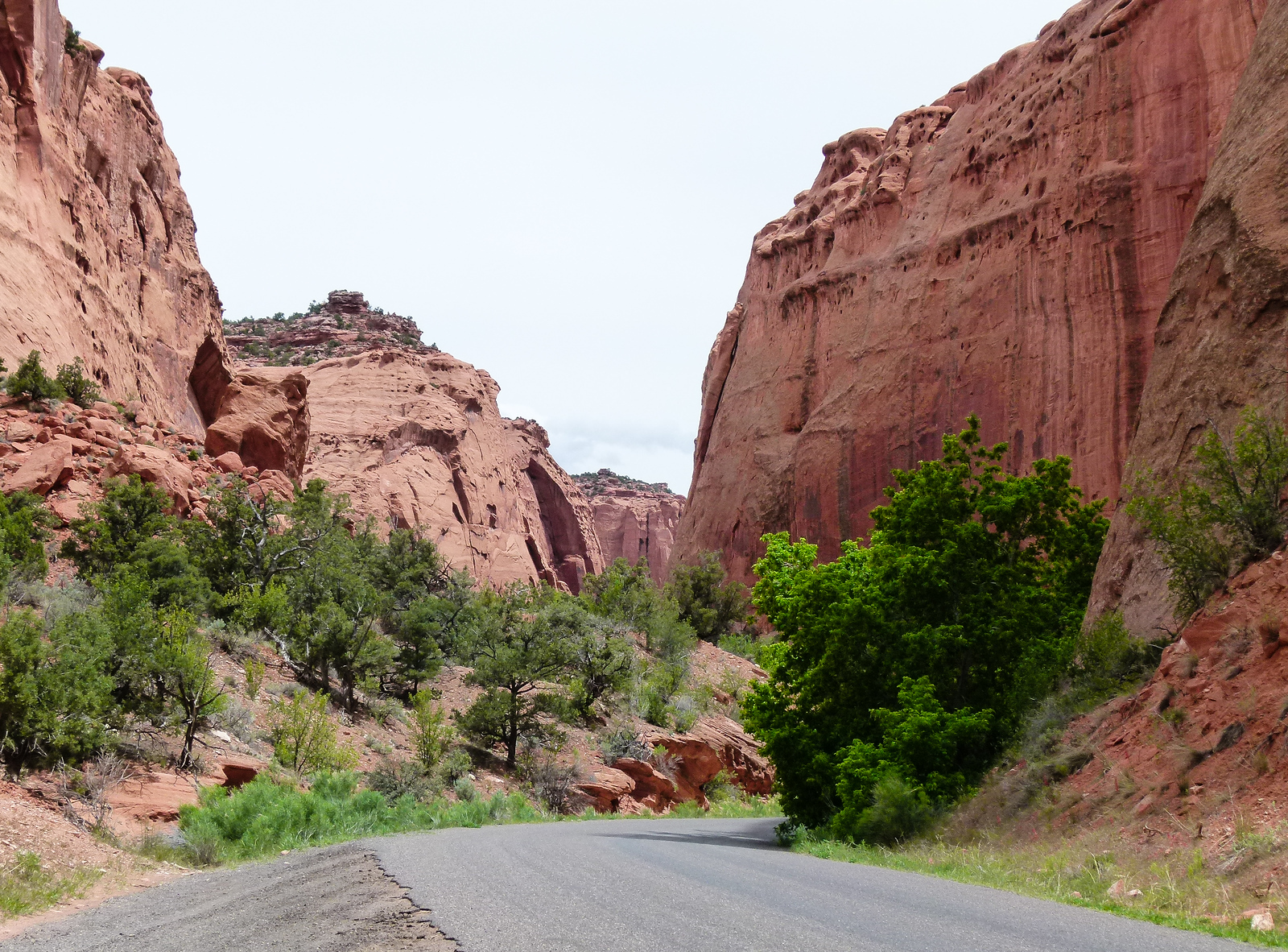 The paved portion of the scenic Burr Trail travels between the pink walls of Long Canyon in Southern Utah.