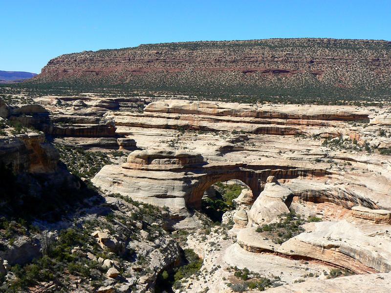Cream-colored sandstone creates a land bridge at Natural Bridges.
