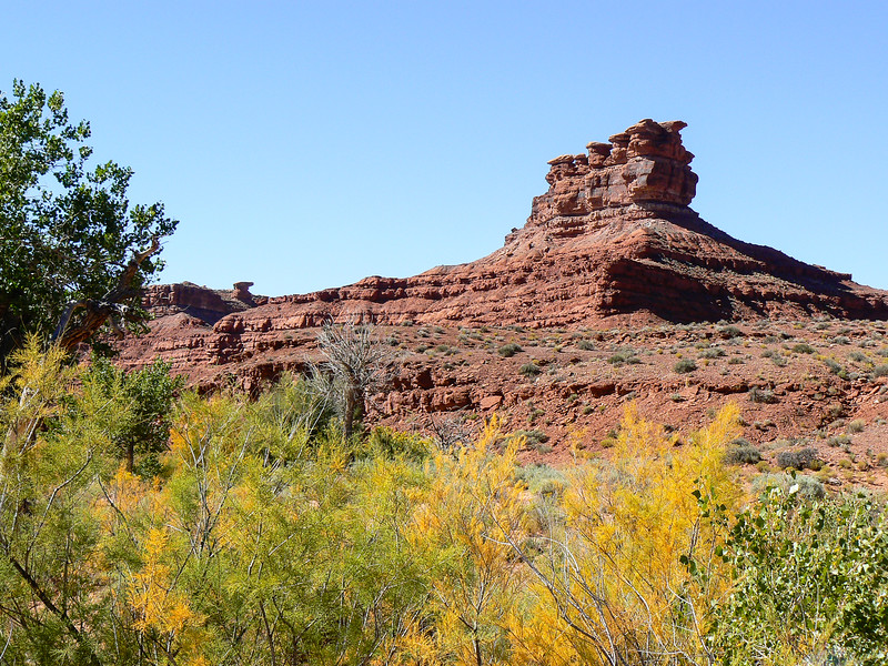 Valley of the Gods in the fall