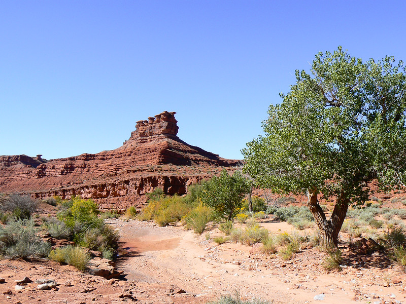 Drive the dirt roads of Valley of the Gods for a fun Utah travel adventure.