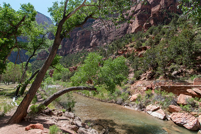 Virgin River in the Narrows, Zion National Park, Utah
