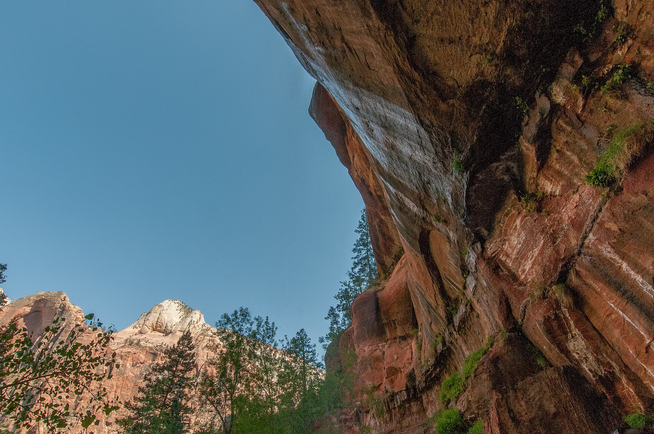 Looking up the canyon in Zion National Park, Utah