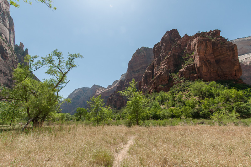 Trail with a view of the canyon in Zion National Park, Utah