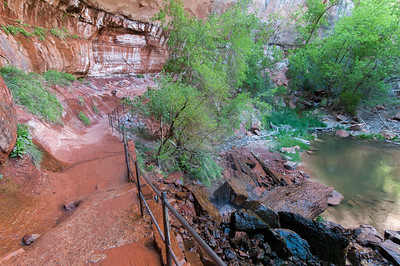 Trail near Virgin River in Zion National Park, Utah
