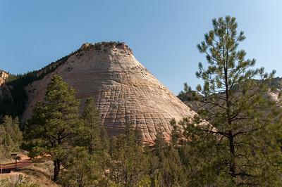 Checkerboard Mesa in Zion National Park, Utah