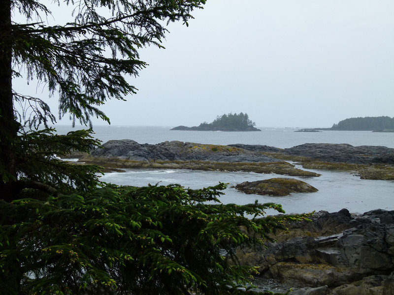 Window view of Chesterman Beach at Wickaninnish Inn, Tofino, B.C.