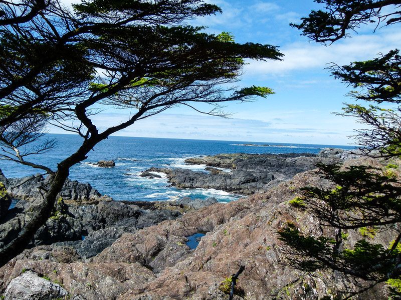 Boomer travel - Canada - Walk the Wild Pacific Trail when your boomer road trip visits Ucluelet on the west coast of Vancouver Island.