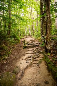 Vermont_MountMansfield_013