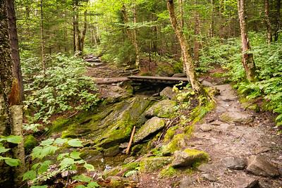 Vermont_MountMansfield_023