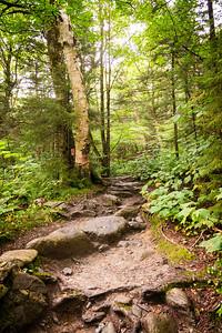 Vermont_MountMansfield_020