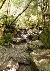 Vermont_MountMansfield_035