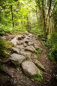 Vermont_MountMansfield_026