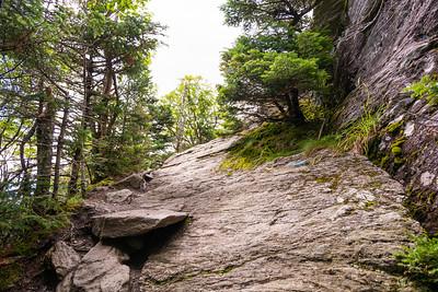 Vermont_MountMansfield_037