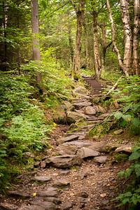 Vermont_MountMansfield_024