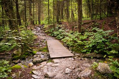 Vermont_MountMansfield_021