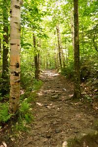 Vermont_MountMansfield_011