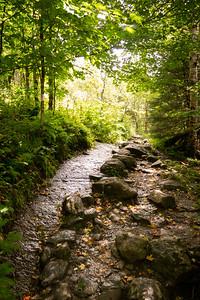 Vermont_MountMansfield_030