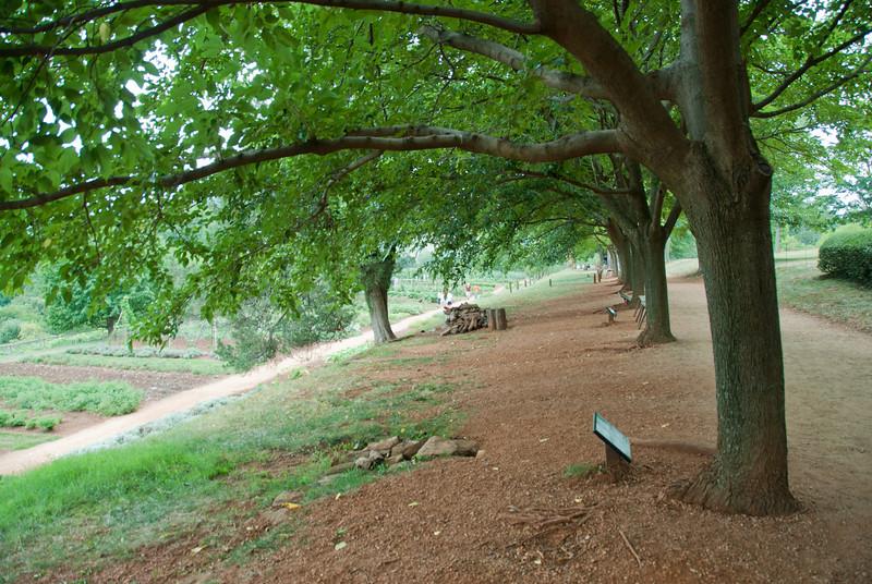 Jefferson's vegetable garden in Monticello, Charlottesville, Virginia