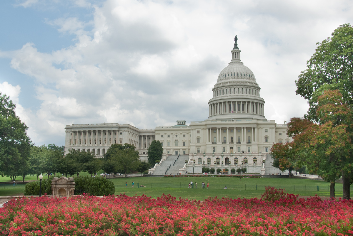 The United States Capitol Building, Washington DC