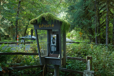 Telephone booth in Olympic National Park in Washington