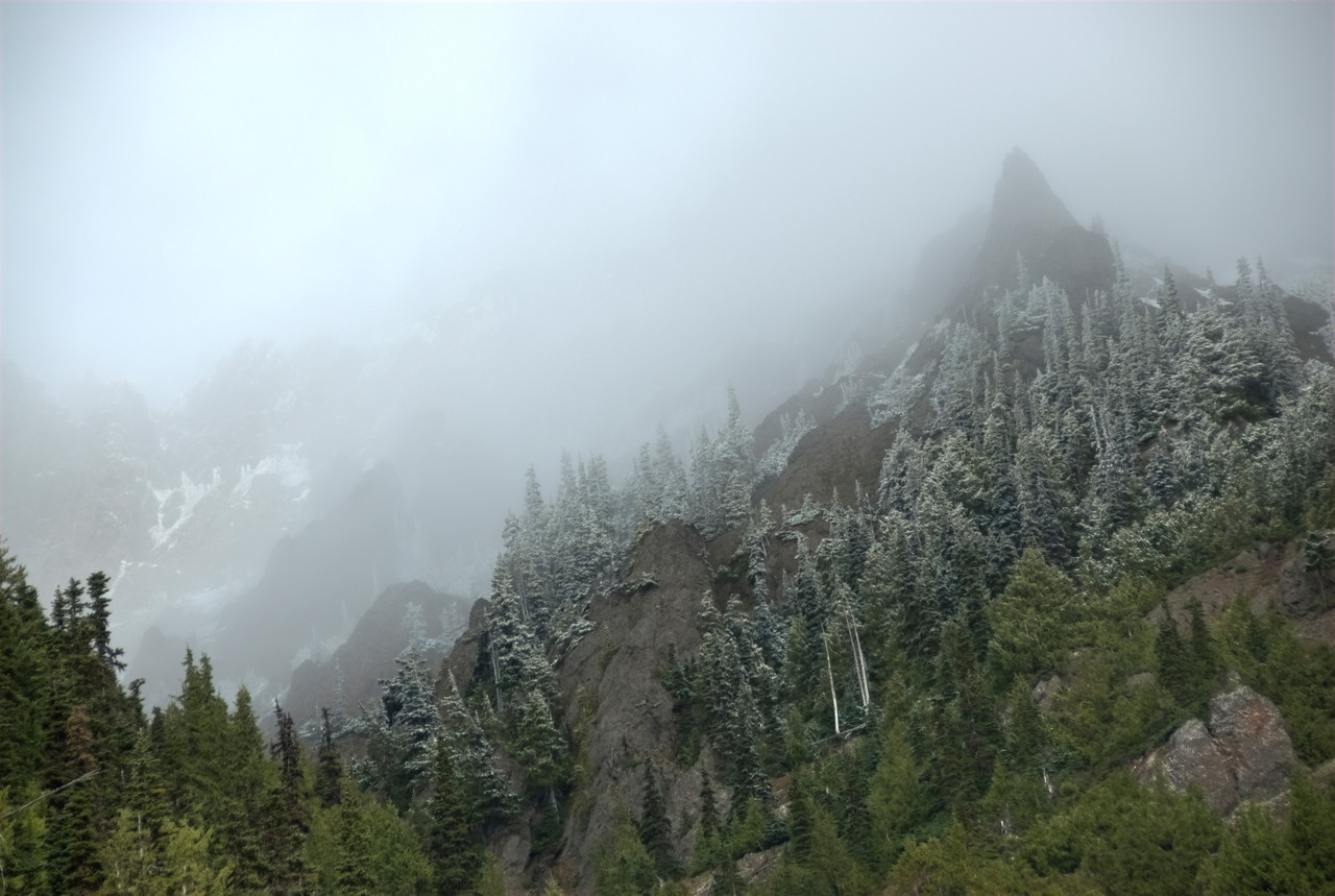 Mist over Olympic National Park in Washington