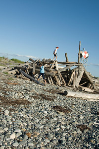 Driftwood in the Rocky Beach in Point Roberts, Washington
