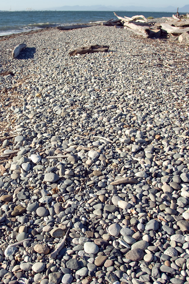 Pebbles on a rocky beach in Point Roberts, Washington