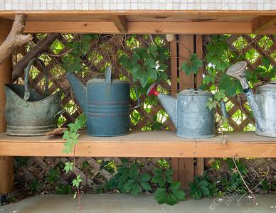 High Desert - watering cans