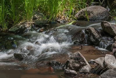 Lower La Jara Creek