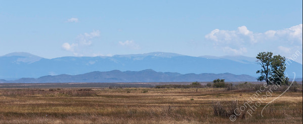 Alamosa Wildlife Refuge - Sangre de Cristo mountains